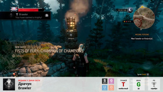 "Трофей ""Драчун / Brawler"" в The Witcher 3: Wild Hunt (Steam, GOG, PlayStation, Xbox)"