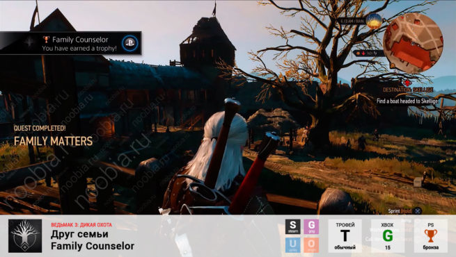"Трофей ""Друг семьи / Family Counselor"" в The Witcher 3: Wild Hunt (Steam, GOG, PlayStation, Xbox)"