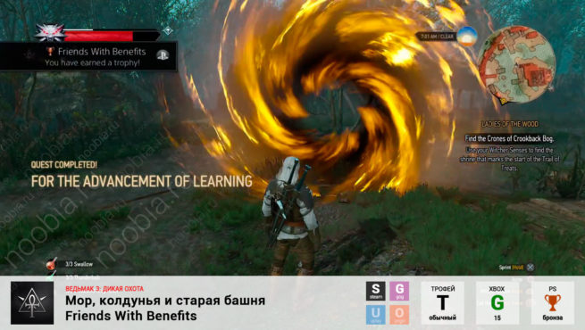 "Трофей ""Мор, колдунья и старая башня / Friends With Benefits"" в The Witcher 3: Wild Hunt (Steam, GOG, PlayStation, Xbox)"