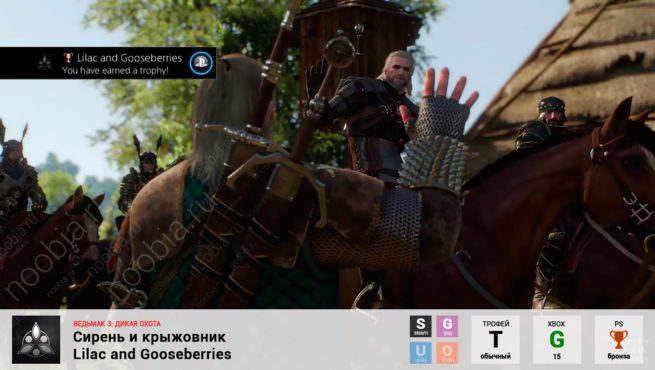 "Трофей ""Сирень и крыжовник / Lilac and Gooseberries"" в The Witcher 3: Wild Hunt (Steam, GOG, PlayStation, Xbox)"