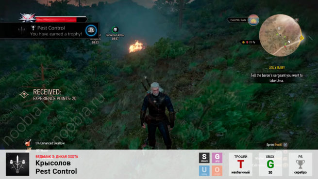 "Трофей ""Крысолов / Pest Control"" в The Witcher 3: Wild Hunt (Steam, GOG, PlayStation, Xbox)"