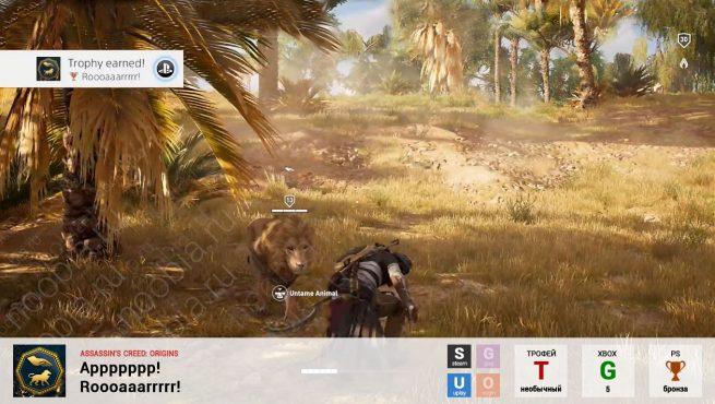 """Трофей """"Аррррррр! / Roooaaarrrrr!"""" в Assassin's Creed: Origins (Steam, Uplay, PlayStation, Xbox)"""
