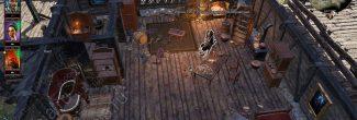Divinity: Original Sin 2: мейстр Сива в своем доме в Дрифтвуде